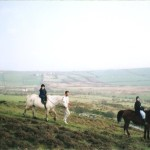 Horse riding in the Preseli Mountains