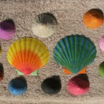 Seashells painted with water colours