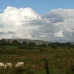 The Preseli Mountains