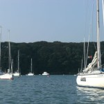 Weaving through the moored yachts at Dale